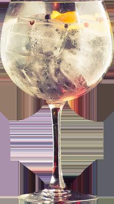 Copa de Balón - Gintonic